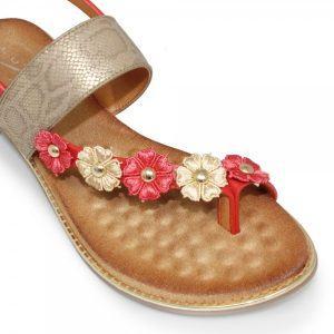 bianca-floral-toe-loop-sandal-p2605-116051_image
